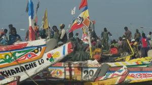 Migranter från Senegal har anlänt till Gran Canaria