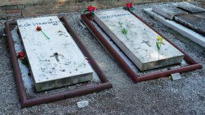 Igor och Vera Stravinskijs gravar på gravgården på ön San Michele i Venedig.