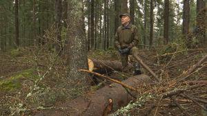En man som spanar ut över sin skog.