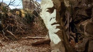 David Bowien kasvot kivessä. Kuva elokuvasta Labyrintti.