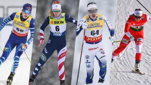Alexander Ståhlberg, Hailey Swirbul, William Poromaa och Monika Skinder