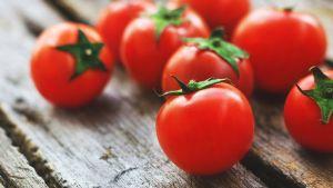 tomaatteja pöydällä