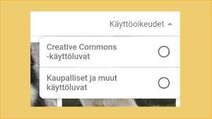 Kuvakaappaus puhelimen Chrome-selaimesta: Hakutyökaluissa valittuna käyttöoikeudet, jolloin tarjolle tulee kaksi vaihtoehtoa: CC-kuvat ja Kaupalliset ja muut käyttöluvat.