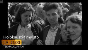 Holokausti-aiheisen Teemalauantain traileri. Kuvakaappaus.