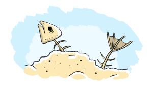 Piiroskuva kalanruodosta.