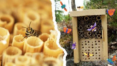 Kuvassa kaksi hyönteishotellia vierekkäin, niiden ympärillä parveilee piirrettyjä hyönteisiä.