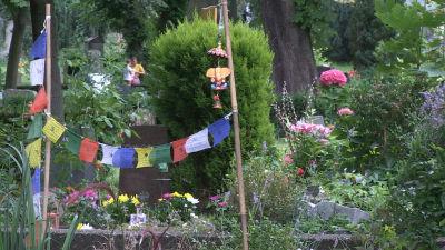 Tibetanska böneflaggor vid en grav.