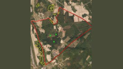 Laajametsän teollisuusalueen viitasammakkoalueet kartalla
