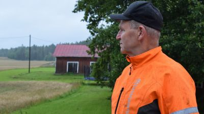 Peter Lindström, iförd orange arbetshalare, ser ut över åkrarna i regnigt augustiväder.