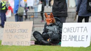 Djurrättsaktivist med rävmask sitter i en bur under en demonstration.