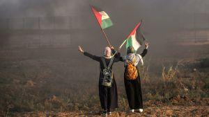 Palestinier håller i flagga och håller händerna upp mot himmelen.