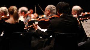 En violinorkester.
