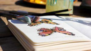 En bok med fjärilar.