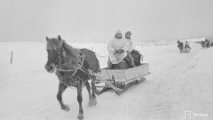 30.1.1940 Huoltokolonna Pyörittäjänkylässä Suistamolla.
