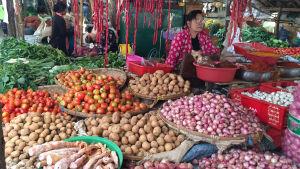 Grönsaksmarknad i Burma. Lökar och potatis.