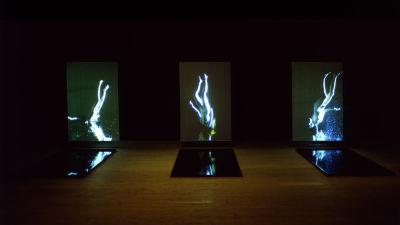 Tre videoprojektioner bredvid varandra som visar en naken kropp i vatten.