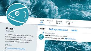 Skärmdump på strömmingsrörelsens Twitterkonto.