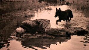Stalker (Aleksandr Kaidanovski) makaa kyljellään mättäällä keskellä betonista kanavaa. Musta koira juoksee matalassa vedessä.