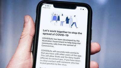 """Bilden föreställer en mobiltelefon. På skärmen står det """"Let's work together to stop the spread of covid-19""""."""