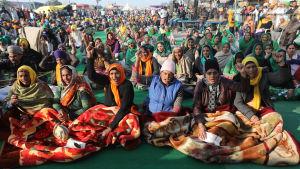 Jordbrukare protesterar i Haryana, nära New Delhi, Indien 14.12.2020