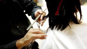En frisörs händer som klipper ett mörkt axellångt hår