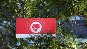 ett presentkort på en gren i julgranen