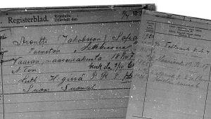 Sofia Arentin tietoja poliisin osoitetoimiston arkistokortissa.