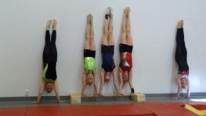 De här gymnasterna från Kronoby är en målgrupp för Jakobstads gymnasium i höst.