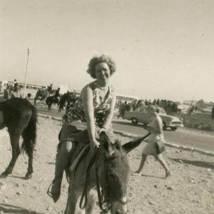 Meri Louhos ratsastaa aasilla Kairossa.