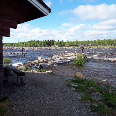 Mies seisoo lipporenkulla Tornionjoen yllä Kukkolankoskella. Vesi on tulvakorkeudessa kesäkuussa 2020.