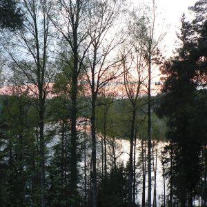 Kersti Juvalla on kolme kotia, joista yksi on lapsuuden maisemissa Nuuksiossa. Metsä ja sen takana siintävä järvi ovat osa Juvan sielunmaisemaa.