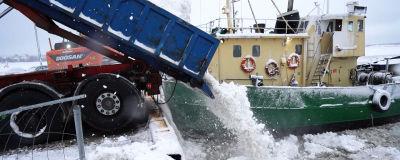Snö som dumpas i havet från en lastbil. I bakgrunden syns också en båt.