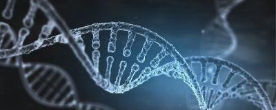 En rendering av en DNA sträng som vrider sig fram.