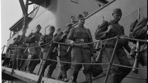 Frivilliga SS-män stiger i land i Hangö den första juni 1943. Foto: SA-kuva.