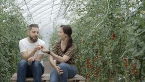 Filip och Linda bland tomater.