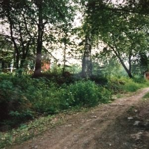 Riitta Oikawan lapsuuden koti oli Heiskalan saaressa lähellä Iisalmea.