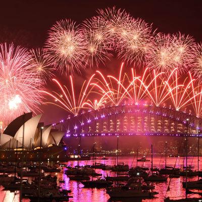Fyrverkerierna ovanför operahuset i Sydney färgar havet och himlen röd.