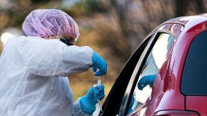 En person i skyddskläder tar ett coronavirusprov med en bomullspinne av en person i en bil med nedvevad bilruta.