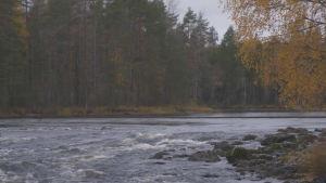 I Heinävesi är man orolig för att vattendragen ska förorenas om en grafitgruva öppnas här. ch sjöar förenade med Saimen och där är man