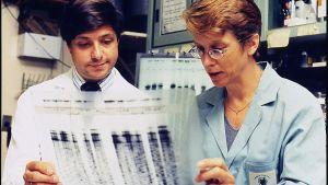 Jeffrey Taubenberger (t.v.) var den första som isolerade H1N1-viruset från 1918 i ett prov taget från en grav i Alaska. DNA-sekvensen som han och kollegan Ann Reid tittar på tillhör H1N1-viruset.
