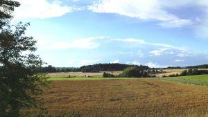 Näkymä autiotalolta pelloille.