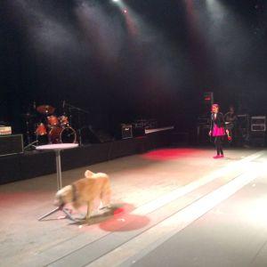 Janina Taskinen och Soni uppträdde med hunddans