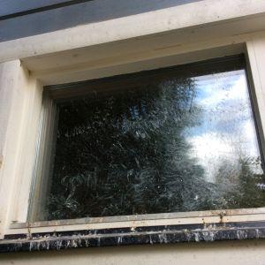 Carita Nyman har i en månad haft en koltrast, som smutsar ned s.g.s alla fönster på stugan. Hon har försökt dra ned gardinerna, även hängt upp brokiga dukar, men ej på utsidan...ännu. Är det den enda lösningen?