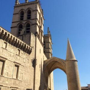 Montpellier'n vanha katedraali lääketieteellisen tiedekunnan vieressä.