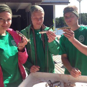 Lucinda Kraufvelin, Eemeli Repo och Lukas kamis har kollat om det fanns något i fiskarnas magar, men det fanns inget.