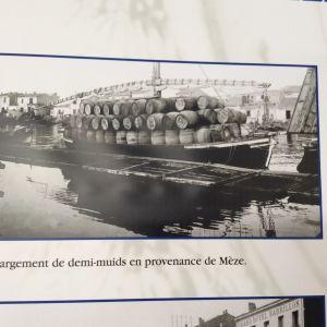 Viinitynnyreitä lastissa (muid oli Henrik IV:n määräämä mitta viinille ja alkoholille, n. 280 litraa, tässä puolikkaita eli 140 litran viinitynnyreitä Sète'in satamanäyttelyn valokuvassa).