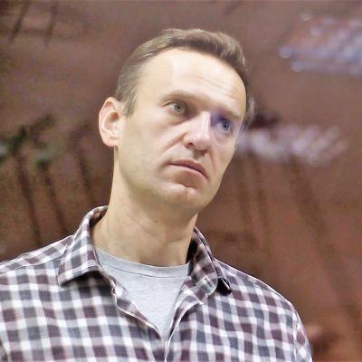 Aleksei Navalnyi seisoo ruutupaidassa lasikopissa oikeussalissa.