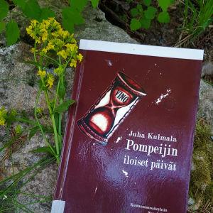 Juha Kulmasen teos kivilaatalla maastossa, kukkia vieressään