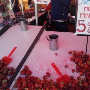 jordgubbsförsäljning vid salutorget i Helsingfors