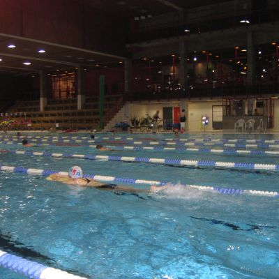 Simmare i Impivaara i Åbo